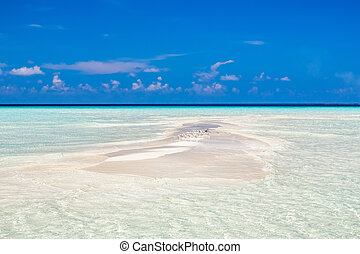mała wyspa, malediwy, ocean