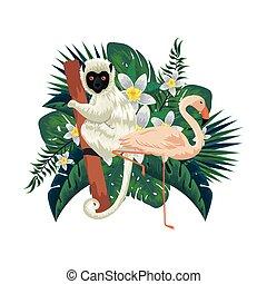 małpa, dłonie, flamandzki, kapucyn, tropikalny, liście, ptak