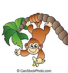 małpa, wisząc dalejże, dłoń drzewo
