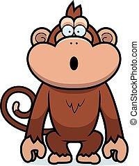małpa, zdziwiony