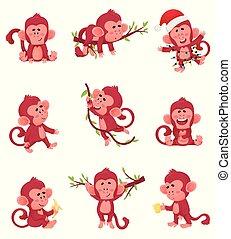 małpy, chartoon, różny, ilustracja, wektor, czyny, pozy, czerwony, komplet, caracter, zabawny