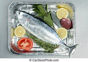 mały, color., tuńczyk, tunny, alby, albacore, srebro