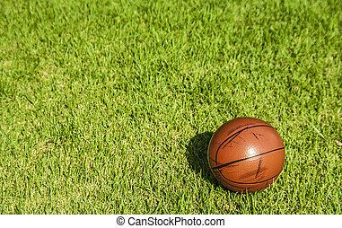 mały, koszykówka, trawa, brudny