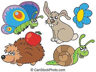 mały, zwierzęta, zbiór, 7