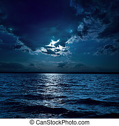 maan, licht, op, verdonkeren, water, in, nacht