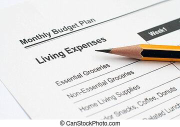maandelijks, begroting, plan