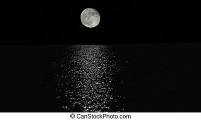 maanlicht, steegjes, met, laag, dwaas, maan