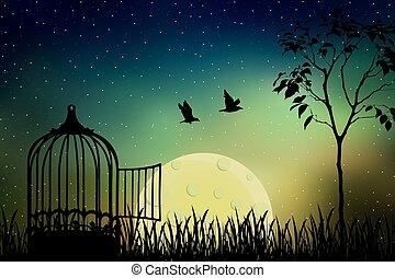 maanlicht, vrijgegeven
