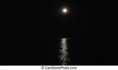 maanlicht, zee