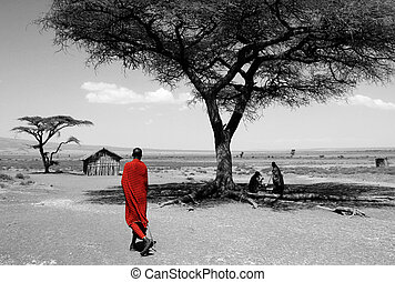 maasai, région conservation ngorongoro, tanzanie