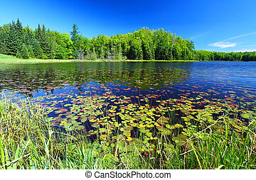 Mabel Lake Northwoods Wisconsin