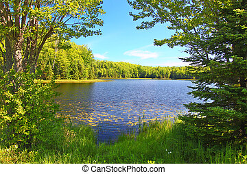 Mabel Lake Northwoods Wisconsin - Forest trees frame a...