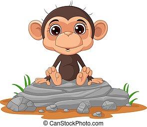 macaco, cute, rocha, sentando, caricatura, bebê