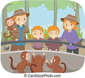 macacos, jardim zoológico