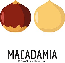 Macadamia icon, flat style