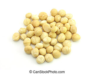 Macadamia Nut in isolated white
