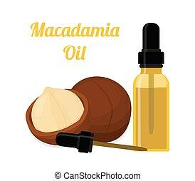 Macadamia oil, essence, perfume, cosmetics. Cartoon flat style. Vector illustration