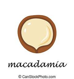 Macadamia on white background in cartoon style.