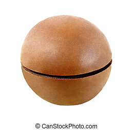 Macadamia, one whole unbroken nut isolated on a white background with clipping path. Full depth of field.