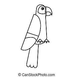 macao, tropicale, scarlatto, linea sottile, uccello
