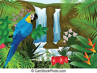 macao, uccello, con, cascata, backgroun