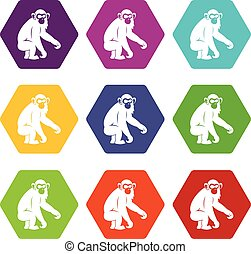 Macaque icon set color hexahedron