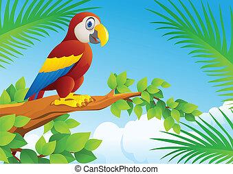 macaw, 鳥, 漫画