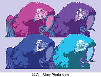 Macaw-Art - Macaw-Illustration in pop-art style