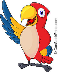 Macaw bid carton waving