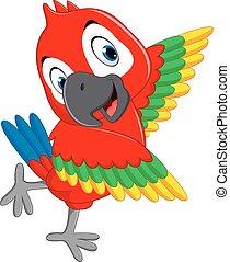 macaw, caricatura