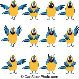 macaw, heiligenbilder, satz, wohnung