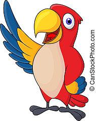 macaw, karton, zwaaiende , bieden