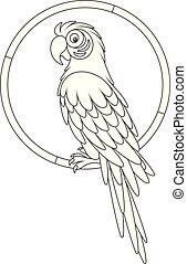 macaw, lustiges, papagai, basierend