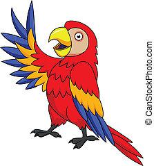 macaw, oiseau, dessin animé