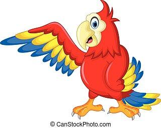 macaw, poser, oiseau