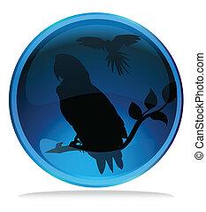 macaw, silueta