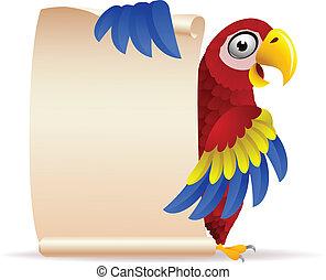 macaw, vogel, met, boekrol, papier