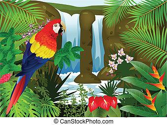 macaw, vogel, mit, wasserfall, backgroun