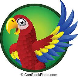 macaw, zeichen, karikatur