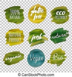 macchia, verde, isolato, fondo, trasparente