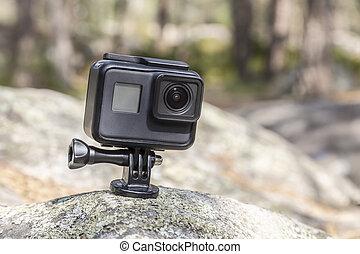 macchina fotografica, foresta, azione