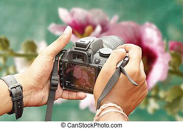 macchina fotografica, riprese, slr