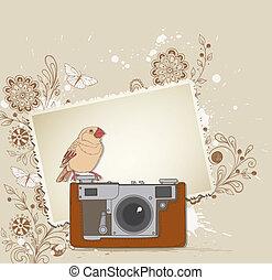 macchina fotografica, vecchio, uccello