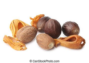 Mace with nutmeg on white background