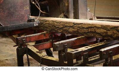 machine cut logs wooden plant