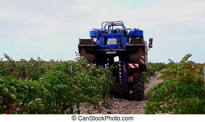 machine for picking up the wine grapes.