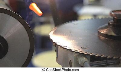 Machine for sharpening a circular saw blade
