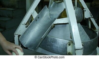 machine for the production of bread at the bakery. roll up the dough into balls for baking