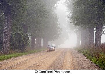 Machine in fog submerged gravel tree avenue.