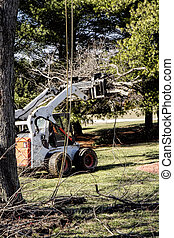 Machinery Removing Logs - Large logs and tree parts being ...